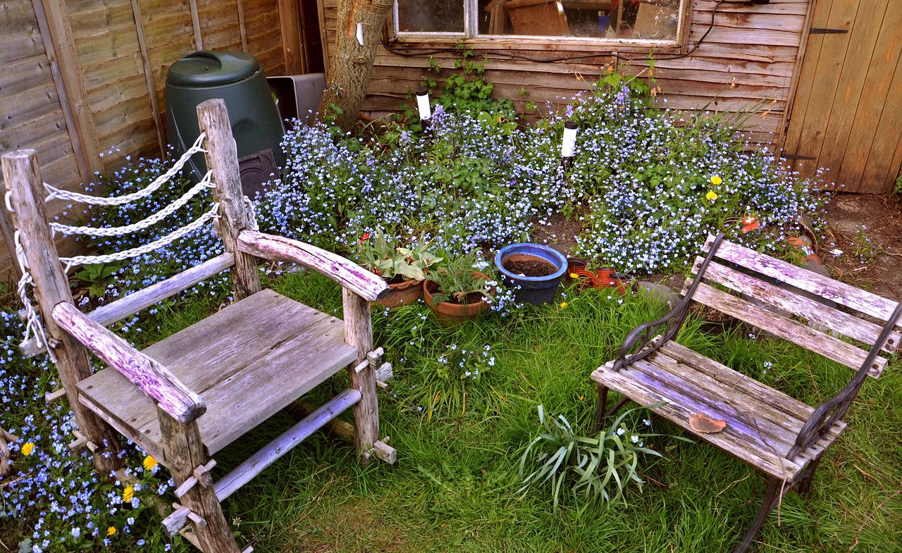 Mi jardín como metáfora de vida